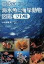 日本の海水魚と海岸動物図鑑1719種/小林安雅【2500円以上送料無料】