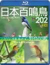 日本百鳴鳥 202 HDハイビジョン映像と鳴き声で愉しむ野鳥図鑑(Blu−ray Disc)【2500円以上送料無料】