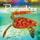 Other - 【店内全品5倍】PARADISE(DVD付)/T−SQUARE【3000円以上送料無料】