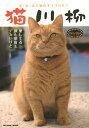 【店内全品5倍】猫川柳 五・七・五で詠むネコゴコロ! ネコイズム【3000円以上送料無料】