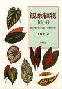 観葉植物1000 種類の特徴から上手な栽培・管理の仕方まで/土橋豊【2500円以上送料無料】