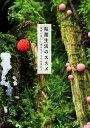 粘菌生活のススメ 奇妙で美しい謎の生きものを求めて/新井文彦/川上新一【2500円以上送料無料】
