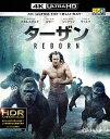 ターザン:REBORN(4K ULTRA HD+3Dブルーレイ+ブルーレイ)/アレクサンダー・スカルスガルド【2500円以上送料無料】