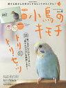 小鳥のキモチ Vol.4【2500円以上送料無料】