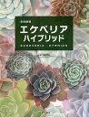 多肉植物エケベリアハイブリッド/羽兼直行【合計3000円以上で送料無料】