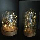 LED ガラスドームライト HIGH Sサイズ【JPDR2010 JPDR2021】□【PL7】【ドーム LEDライト ワイヤー インテリア デコレーション ウ...