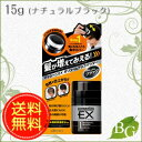 【送料無料】ウテナ マッシーニEX ボリュームアップパウダー (ナチュラルブラック) 15g 15g