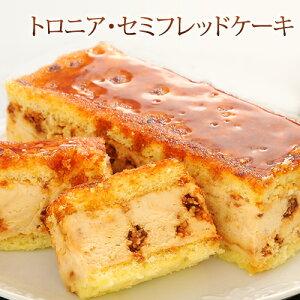 トロニア・セミフレッドケーキ
