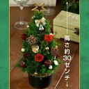 ミニクリスマスツリー型アレンジ Xmasツリー 【送料無料】 05P03Dec16