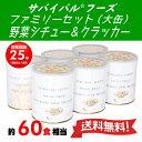 サバイバルフーズ ファミリーセット 野菜シチュー 大缶440...