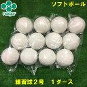 【ラッキーシール付き】【送料無料】ソフトボール 2号球 練習球【Naigai / ナイガイ】