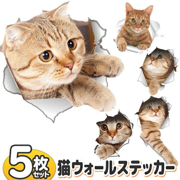 猫 ステッカー 5枚組 とびだすネコ 5枚入り ウォールステッカー リアルねこ かわいい ステッカー シール ワンポイント インテリア まとめ買い まとめ買い ◇ とびだす猫DL