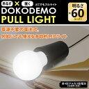 どこでもプルライト 吊るす×置く の 2WAY仕様 LEDライト レトロ感漂う 電球型 デザインがかわいい♪ (検索: 照明 スポットライト スタンドライト テ...
