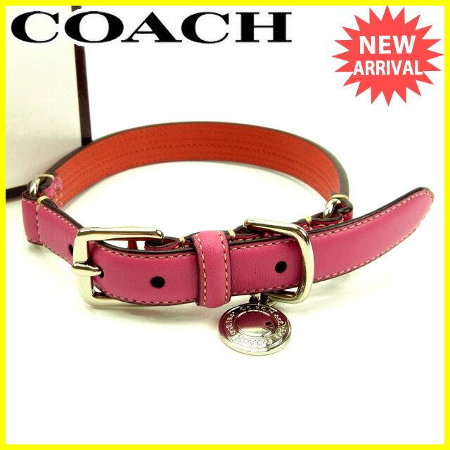 Coach Dog Collars On Sale