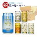父の日 ビール 送料無料 クラフトビール 飲み比べ 詰め合せ セット 軽井沢ビール ギフト プレゼント お試 新発売 清涼飛泉 350ml缶×6本 N-DS
