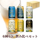 ビール飲み比べクラフトビール詰め合わせセット軽井沢ビールクリスマスプレゼント地ビールクリアダーク白ビールヴァイス黒ビール6種類350ml缶×6本N-KE