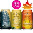 【送料無料】ビール 地ビール クラフトビール セット 詰め合わせ 飲み比べセット THE軽井沢ビール3缶セット プレミアムダーク、ダーク、高原の錦秋(赤ビール)