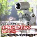 【送料無料】NSK 日本セキュリティー機器販売 全天候型小型防犯カメラ eyeホーク ALL-IN-ONE NS-C019S