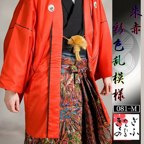 081m【朱赤×彩色乱模様/レンタル4泊5日/...の紹介画像2