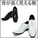 【レンタルシューズ】007靴を履くだけで7センチ身長アップサイズ/24.5cm(黒のみ)/25cm/25.5cm/26cm/26.5cm【往復送料無料】〔結婚式〕〔パーティ〕〔二次会〕〔貸衣装〕〔新郎タキシード〕〔レンタル靴〕〔タキシード靴レンタル〕