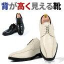 【レンタル靴】002-6 靴を履くだけで6センチ身長アップ サイズ/24cm/24.5cm/25cm/25.5cm/26cm/26.5cm【往復送料無料】〔結婚式〕〔パー..
