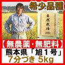 【新米】熊本産 2016年産(平成28年)自然栽培 無農薬 『旭1号 7分づき 5kg 』 熊本県菊