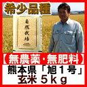 無農薬玄米 幻の米 『旭1号 玄米 5kg 』 送料無料 ササニシキ・コシヒカリの三代祖先 熊