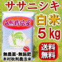 無農薬 『ササニシキ 白米 5kg 』 自然栽培 石山農産