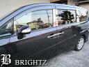 【BRIGHTZ ステップワゴン RG1-4 超鏡面メッキピラーパネルカバー 10PC バイザー有用】