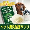 ペット用 プラチナ乳酸菌 5000α (5包入)(動物用乳酸菌 ペットサプリ ペットサプリメント 健康食品)