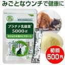 乳酸菌 ペット 犬 猫 サプリ プラチナ乳酸菌5000α(初回お試し500円 ご家族様2コまで)2コご購入で送料無料