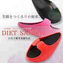 美脚スリッパ バランス トレーニング 1日30分 自宅で簡単美脚生活 ダイエット 体幹 健康 サンダル