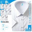 半袖ワイシャツ メンズ 大きいサイズ 春夏対応 クールビズ対応 ボタンダウン 冷感素材 形態安定 3L-6L SEA BREEZE