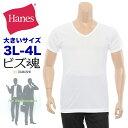 大きいサイズ メンズ Hanes (ヘインズ) 2P ビズ魂...