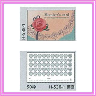 そのままタイプ カード 100 H-538-1 100枚
