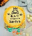 オリジナル ワンコケーキ プレゼント