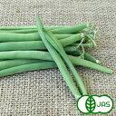 [有機栽培]インゲン(65g)