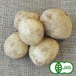 [有機JAS] じゃがいも(500g)  無化学農薬/無化学肥料/有機栽培/国産/西日本/オーガニック【おいしくて安全な野菜宅配のお店_食品_野菜_ジャガイモ_じゃがいも_ギフトや、贈り物にも_おいしい人参のぶどうの木】