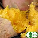 [有機栽培] 安納芋 (10kg)
