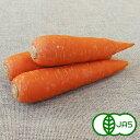 [有機栽培] にんじん特選品 (10kg)