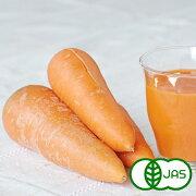[有機栽培] ジュース用ふぞろいにんじん (3kg) あす楽対応!/無農薬/検品済み/有機JAS
