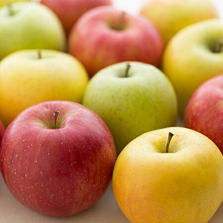 [特別栽培] りんご(2個) 減農薬/低農薬/エコファーマー