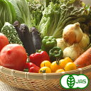 【JAS有機栽培】旬の有機野菜 Mセット