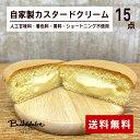 手づくりスイーツ 黄金井パフ 自家製カスタードクリーム 15個