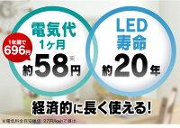 LED������饤��OAL-LPL60G-W�ǥ����饤��LED������ɾ���̵�ʳ�Ĵ���Է���她����ɳؽ������ŵ���D�ۡ�OHM�ۡ�NEW5��05P18Jun16
