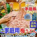【ご家庭用 お買得】ご家庭用大盛り冷し梅うどん10食セット【送料無料】(麺、めんつゆ、梅干300g付