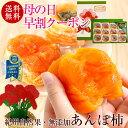 母の日 ギフト プレゼント 早割 クーポンも!無添加スイーツ!紀州自然菓 あんぽ柿12