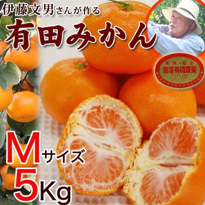 伊藤文男さんが作る 完熟有田みかんMサイズ5kg入