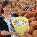 紀州南高梅たっぷり10kgお好みの塩分、お味の梅干しをお選び...