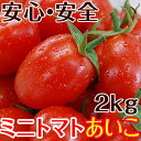 ミニトマトあいこ(アイコ)2kg【送料無料】和歌山のエコファーマーが減農薬・減化学肥料で作るこだわりの果肉・栄養たっぷりの美味しいトマト